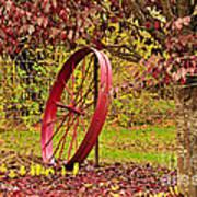 Circle Of Life Poster