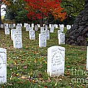 Civil War Dead At Arlington Poster