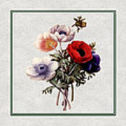 Colorful Anemones Square Poster