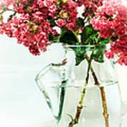 Crepe Myrtle In A Vase Poster