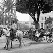 Cuba Havana, C1904 Poster