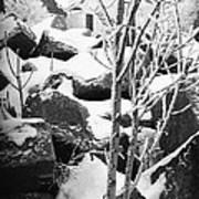 Cut Stone Blocks Backyard Snow Aberdeen South Dakota 1965 Black And White Poster