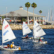 Davis Island Yacht Club Poster