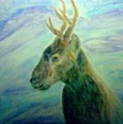 Deer At Home Poster