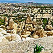 Dog Looking At Fairy Chimneys In Cappadocia-turkey Poster