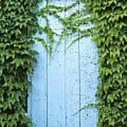 Door Framed By Plants Poster