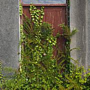 Door Of Old House Poster