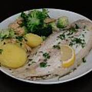 Dover Sole Fish Dinner Poster
