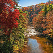 Fall Along The Linville River Poster
