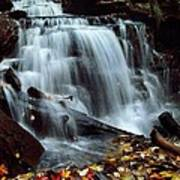 Fall At Ricketts Glen Poster