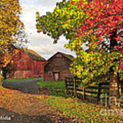 Fall On A Farm In Oregon Poster
