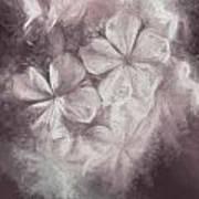Fibonacci Flowers In Energy Manipulation Calculus Poster
