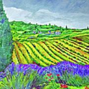 Fields At Dievole Poster