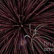 Fireworks Poster by Jason Meyer