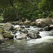 Flowing Stream In Vermont Poster