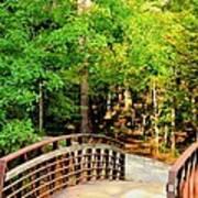 Folsom Bridge At Furnace Creek Poster