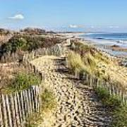 Footpath On The Atlantic Dune In Brittany Poster