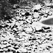 Frozen Riverbed In Winter Poster