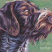 German Wirehaired Pointer Poster