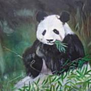 Giant Panda 1 Poster
