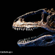 Giganotosaurus Skull 3 Poster