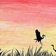 Herons At Sunset Poster by Prashant Shah