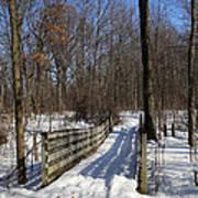 Hiking Trail Bridge With Shadows 3 Poster