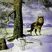 Hunting Wolf Poster