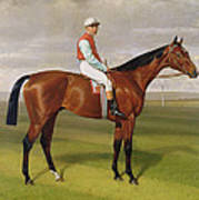Isinglass Winner Of The 1893 Derby Poster