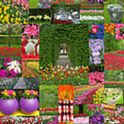 Keukenhof Gardens Collage Poster