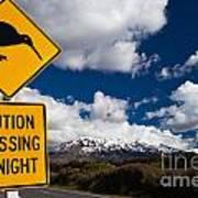 Kiwi Crossing Road Sign And Volcano Ruapehu Nz Poster