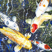 Koi Deep Blue Poster