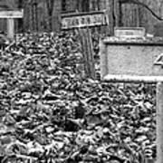 Letchworth Village Cemetery Poster