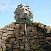 Lion Water Fountain. Poster
