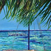 Lokal Flava Caye Caulker Belize Poster