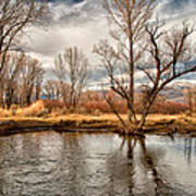 Lower Owens River Poster
