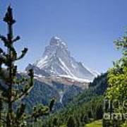 Matterhorn In Zermatt Poster