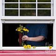 Mature Woman Cutting Flowers In Window Poster