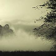 Misty Morning Poster by Cindy Rubin