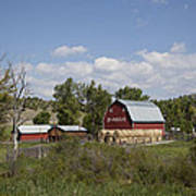 Montana Farm Poster