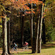 Mountain Bikers Ride In New Gloucester Poster