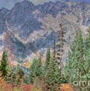 Mountains And Trees Poster