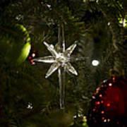 Night View Christmas Tree   1 Of 4 Poster