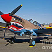 Nose Art On A Curtiss P-40e Warhawk Poster