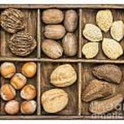 Nuts In Rustic Wooden Box Poster
