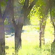 Oaks 25 Poster