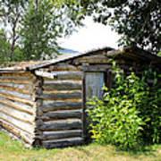 Old Log Homestead Poster
