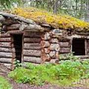 Old Traditional Log Cabin Rotting In Yukon Taiga Poster