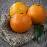 Orange Fruit Poster by Sabino Parente