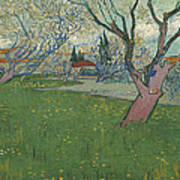 Orchards In Blossom Poster